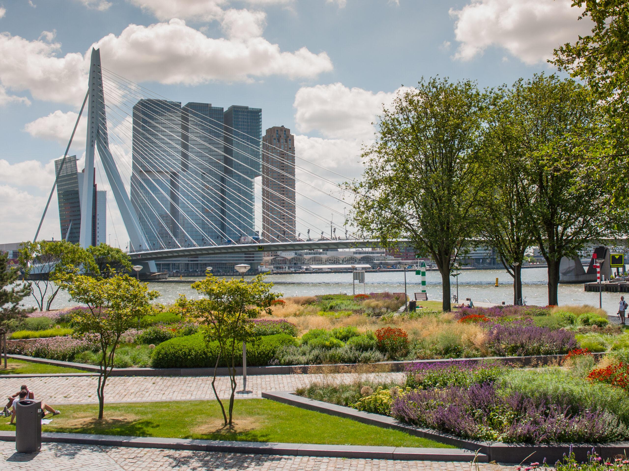 Nieuw groen energiecontract voor gemeente Rotterdam, hoe verliep aanpak aanbesteding?